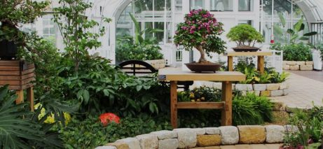 banner-conservatory-1280x330